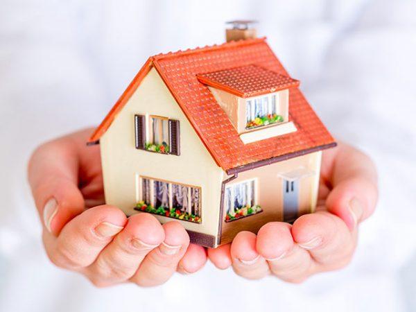 nên mua chung cư hay nhà đất